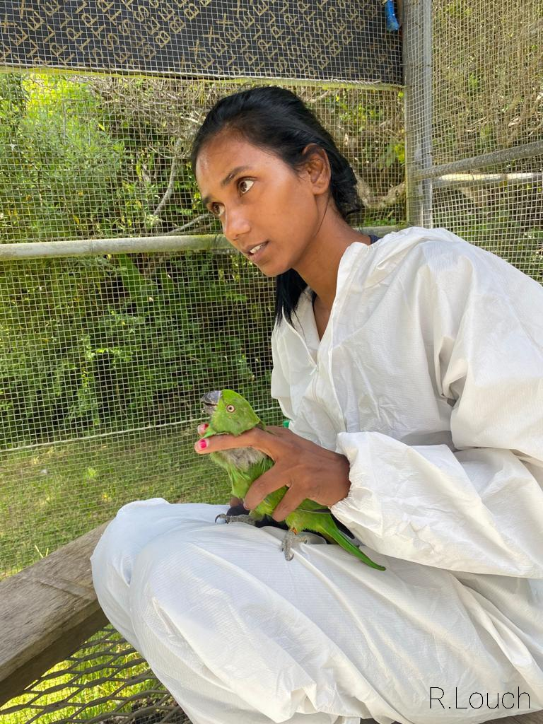 Vanousha handling one year old parakeet